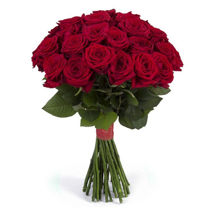 Букет из красных роз 25 шт «Классический»