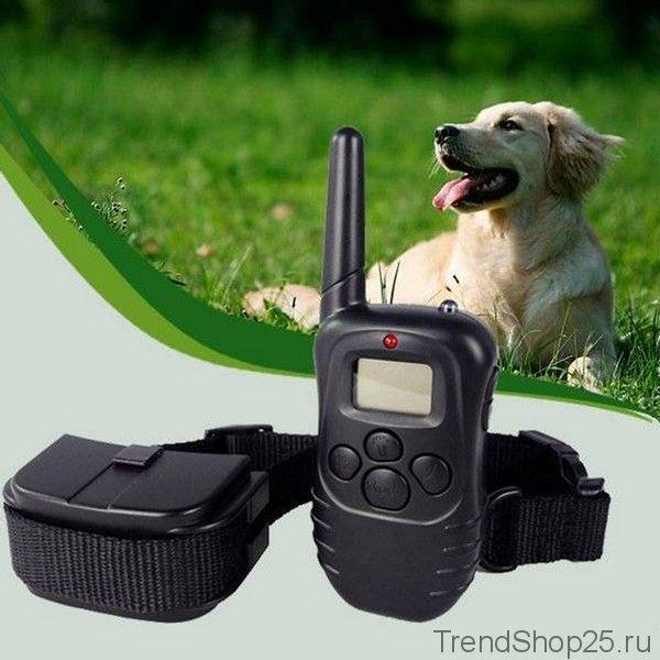 Управляемый электро-ошейник для собак