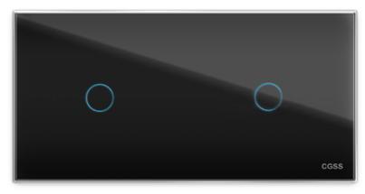 Двухлинейная панель стеклянная черная на два поста CGSS WT-P01+1B