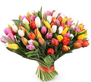 Букет Империя радуги 101 Тюльпан