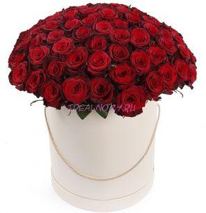 101 красная роза Премиум в шляпной коробке