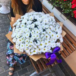 Букет из 35 кустовых хризантем с оформлением крафт бумагой