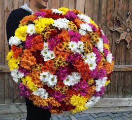 Букет из 51 разноцветной хризантемы с оформлением в крафт бумагу