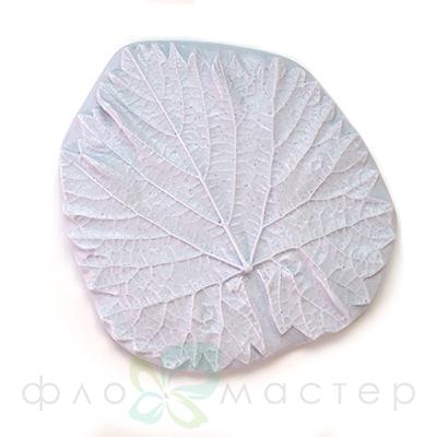 Молд лист винограда