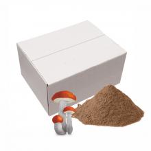 Сублимированный Подосиновик 6х500 г п/п пакет