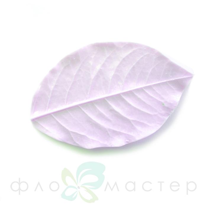 Молд лист бокаловидной розы