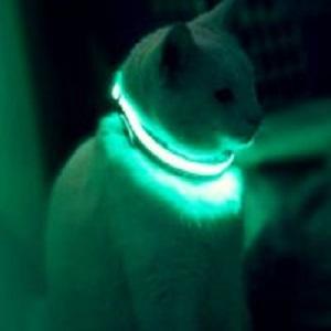 Светящийся ошейник для Кошек и Собак