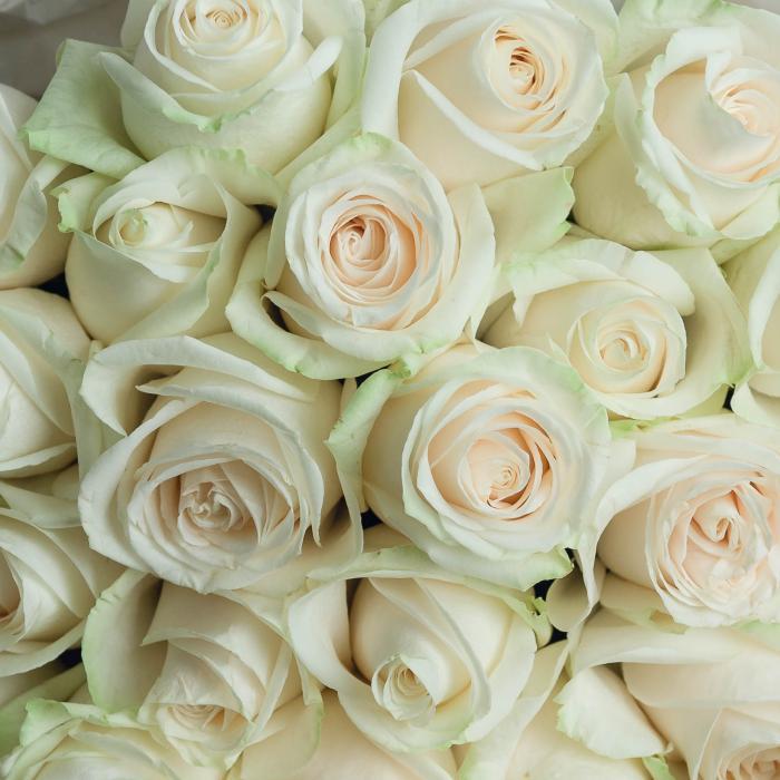 35 роз Vendela