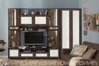 Гостиная Аллегро вариант-4 Caiman белый со шкафом