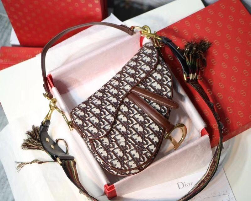 Dior Saddle mini