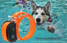 Обновленный Axsel DSL с подсветкой, для любых собак от 7 до 99 кг, обхват шеи до 75 см
