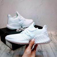 Adidas Alphabounce Instinct Full White