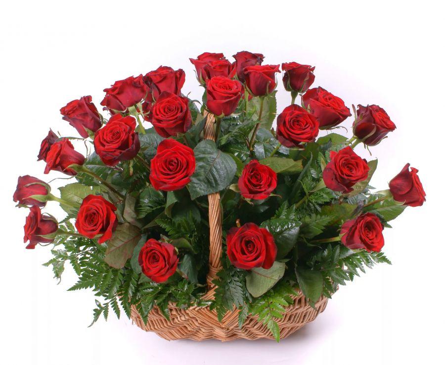 25 роз + корзиночка + зелень