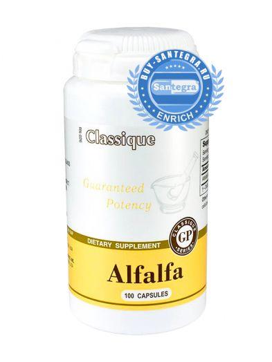 Alfalfa (Альфальфа)