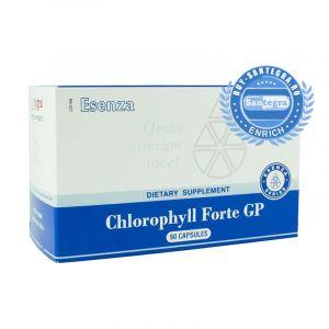 Chlorophyll Forte GP (Хлорофилл Форте Джи Пи)