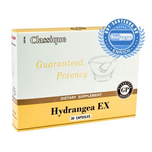 Hydrangea EX (Хайдрэнджи Экс)
