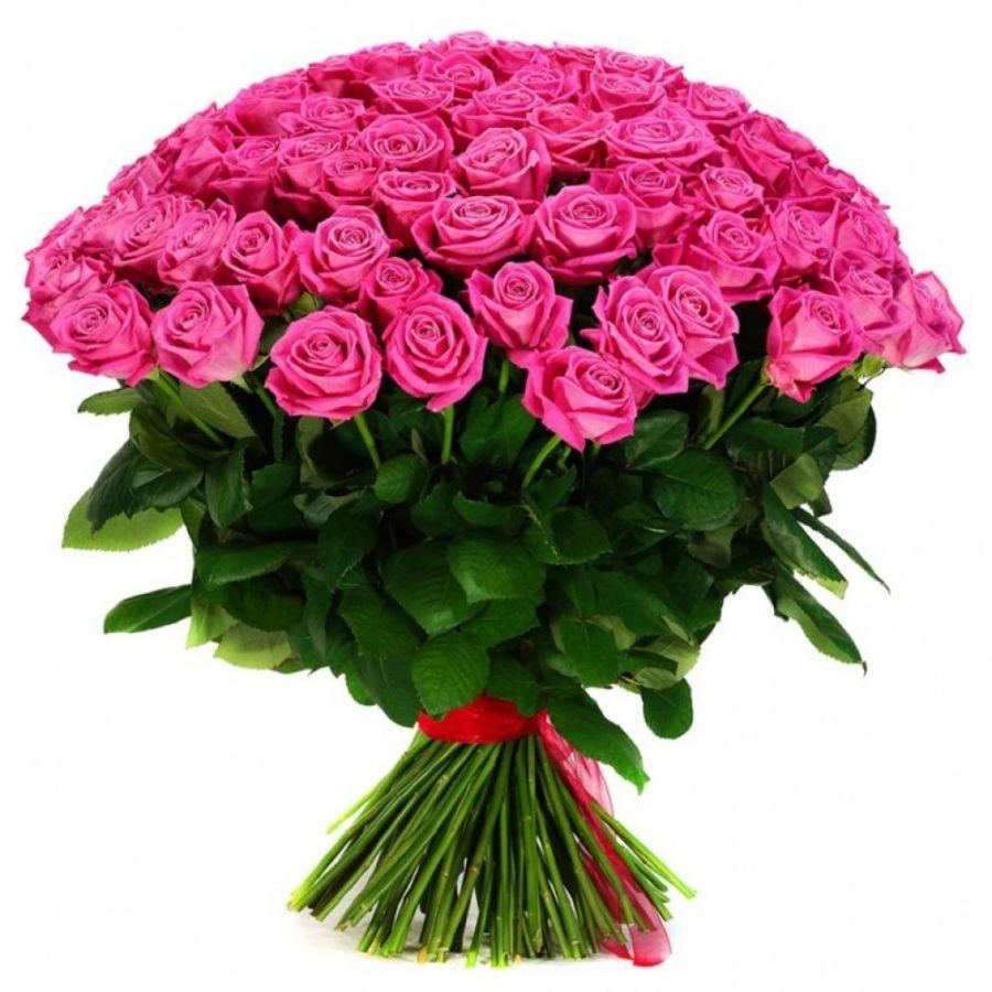 АКЦИЯ: Розы Россия 60 см 101 шт