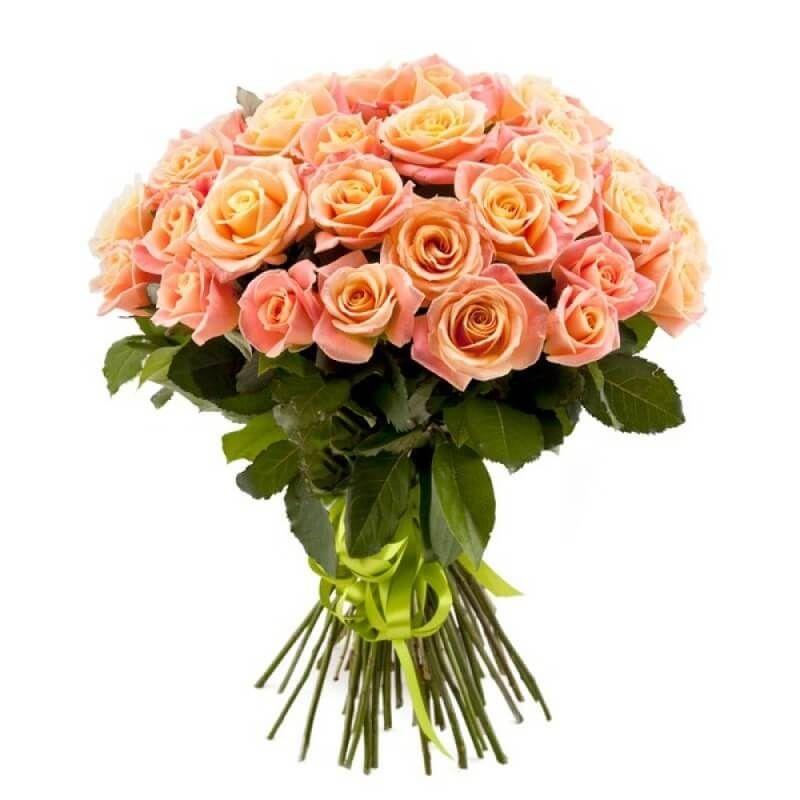 АКЦИЯ: Розы Россия 60 см 51 шт