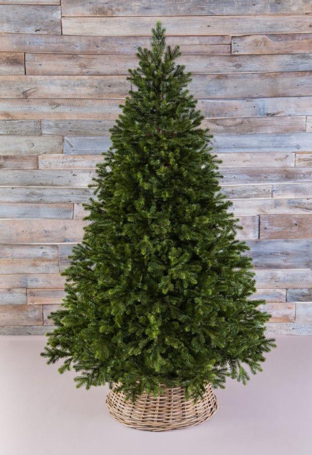 Триумф Можжевельник 155 см зеленый