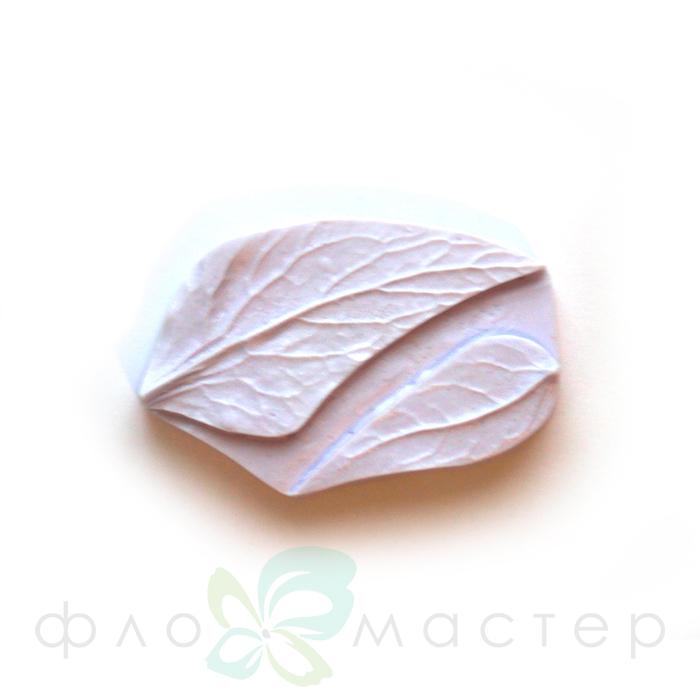 Молд листья незабудки