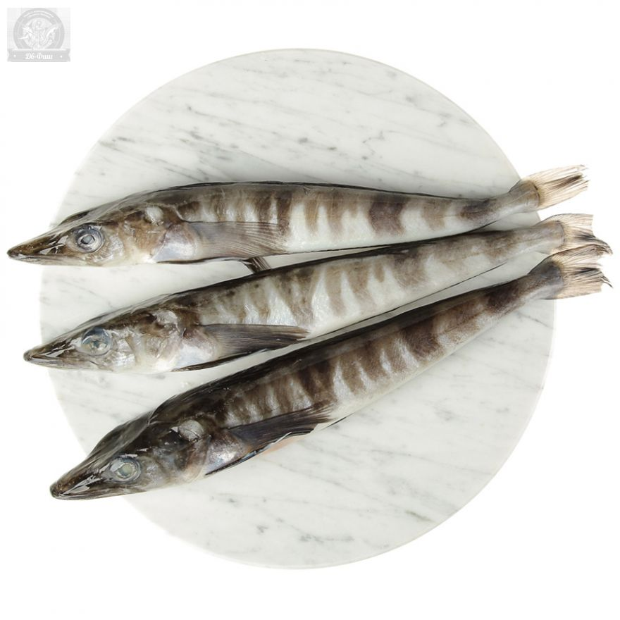 Ледяная рыба.Свежемороженая 300-500 гр 1 шт.