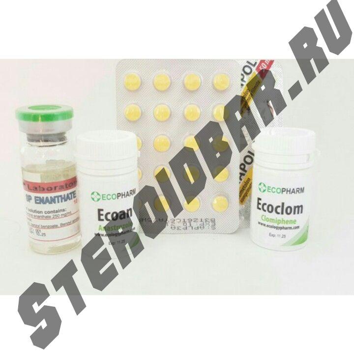 Курс тестостерон энантат + анаполон