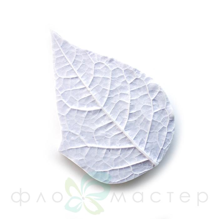 Молд лист физалиса