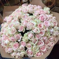 101 роза (45-50 см)