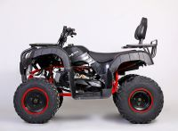 MOTAX ATV Grizlik 200 сс вид 2