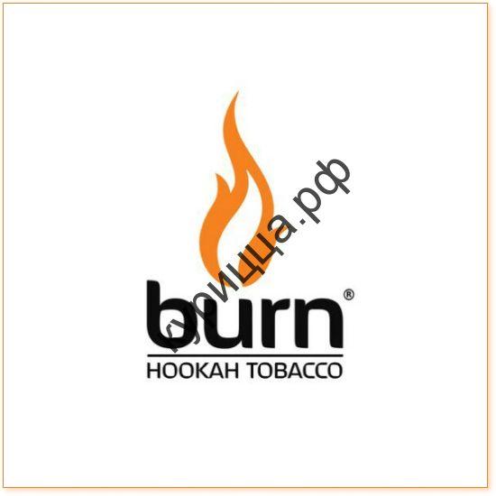 BURN BERRY MIX 1ГР