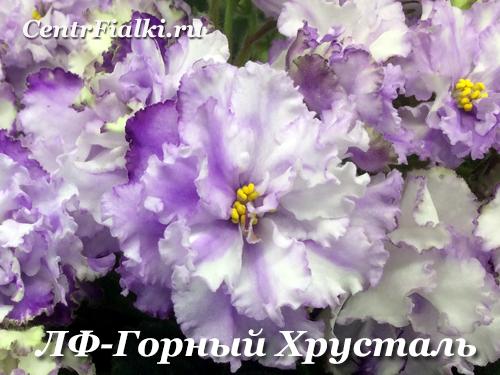 ЛФ-Горный Хрусталь (Л.Федосеева)
