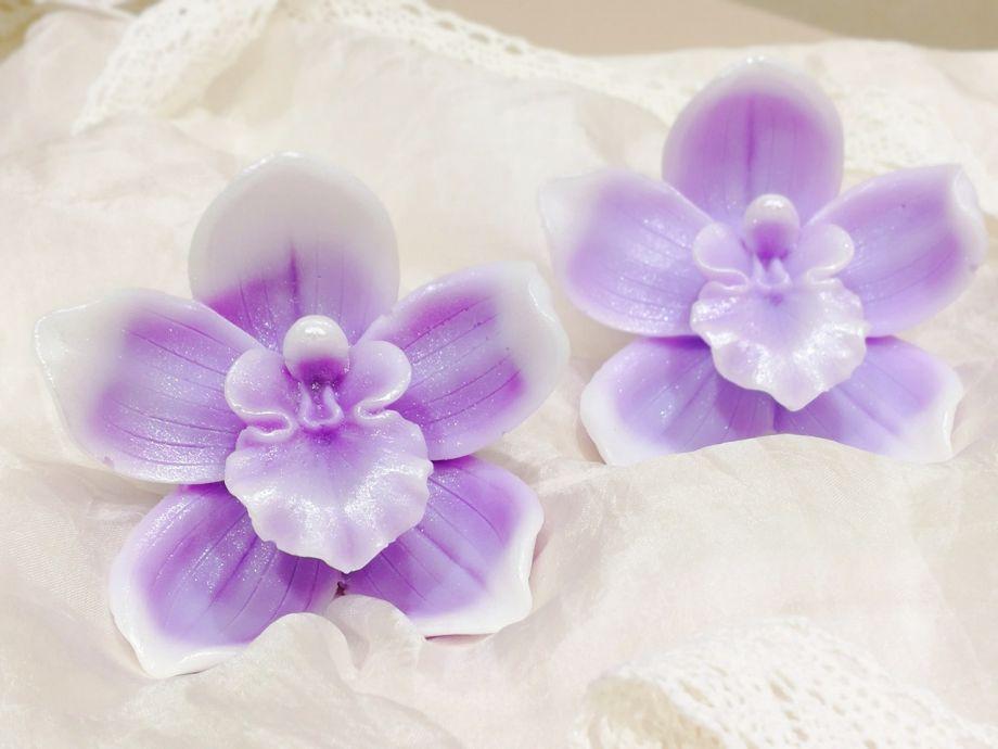 ~Орхидея № 3~