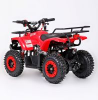 Mowgli Mini Hardy 4T Квадроцикл бензиновый красный 3
