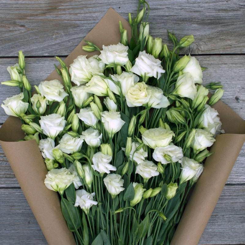 Лизиантусы (эустома) белые