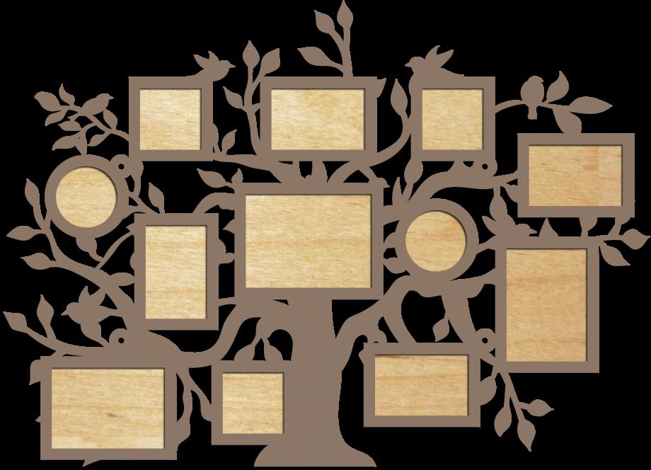 Семейное дерево широкое