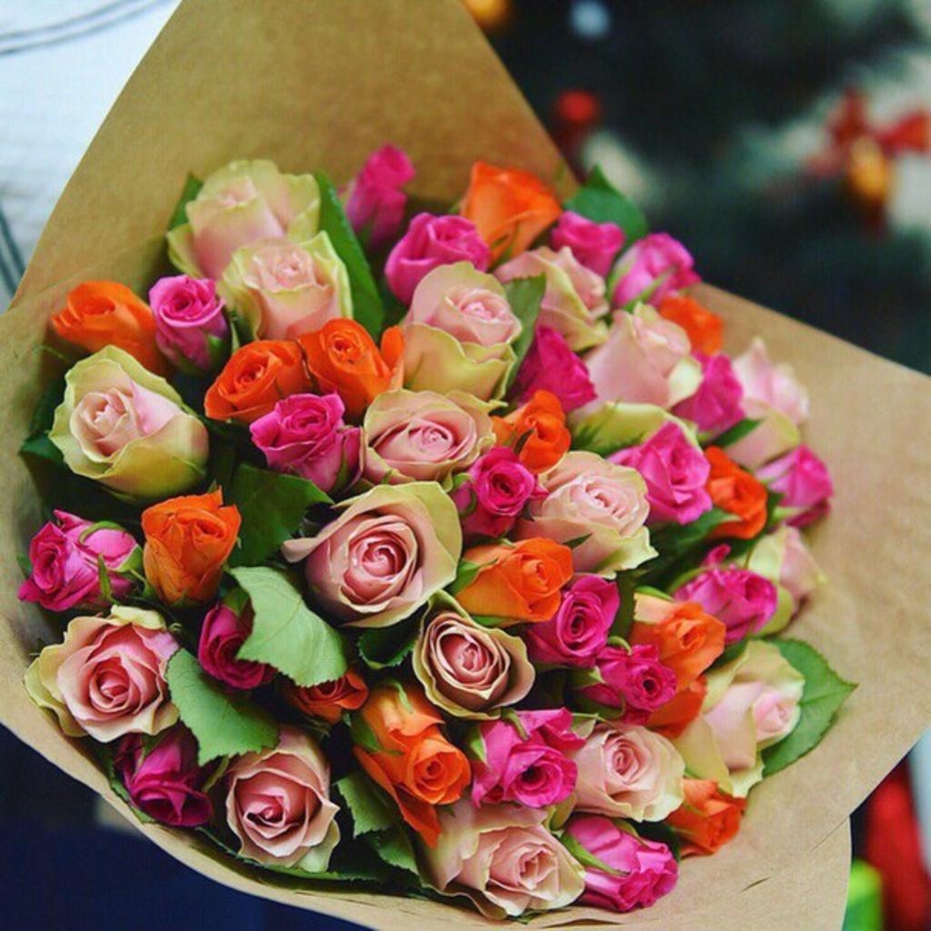 51 роза (микс)