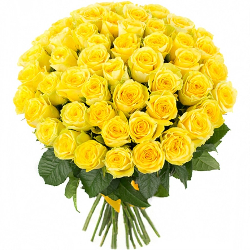 75 желтых роз