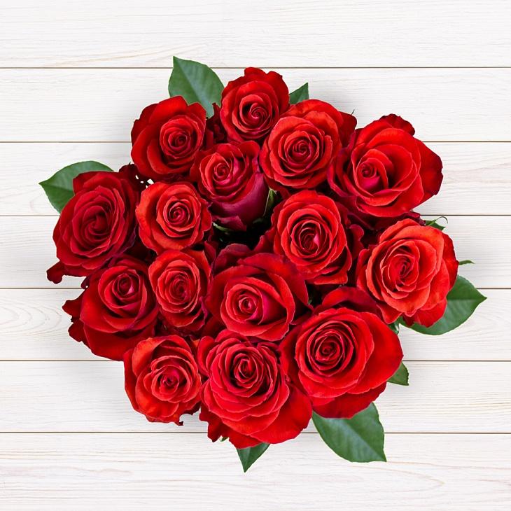 15 роз Фридом
