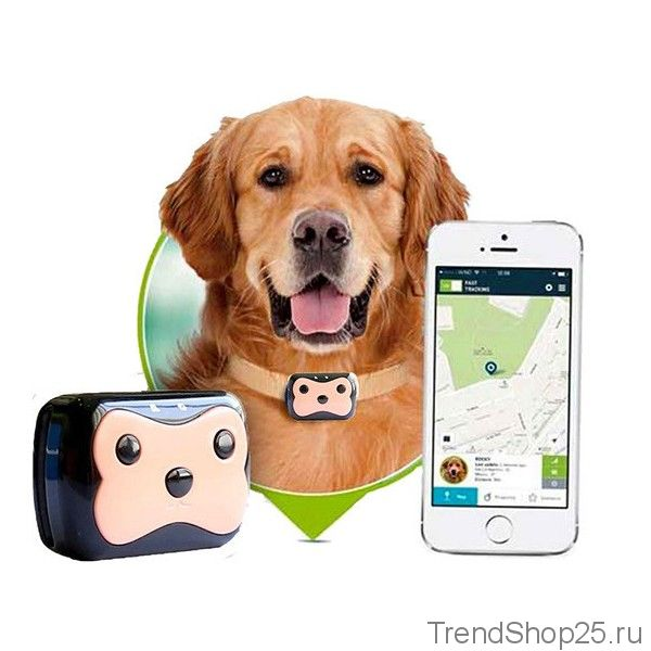 Трекер Pet GPS Tracker для питомцев