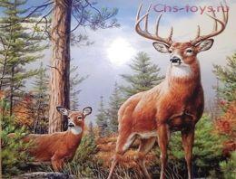 Картина по номерам Олени в лесу W1675