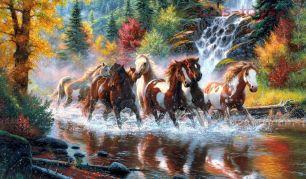 Картина по номерам Лошади на воде W721