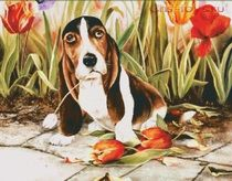 Картина по номерам Собака в тюльпанах W1886