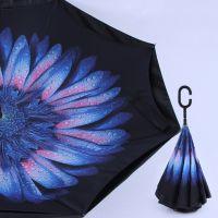 Купить Антизонт Голубой сказочный цветок недорого с доставкой