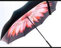 Купить Антизонт Розовый пламенный цветок недорого с доставкой