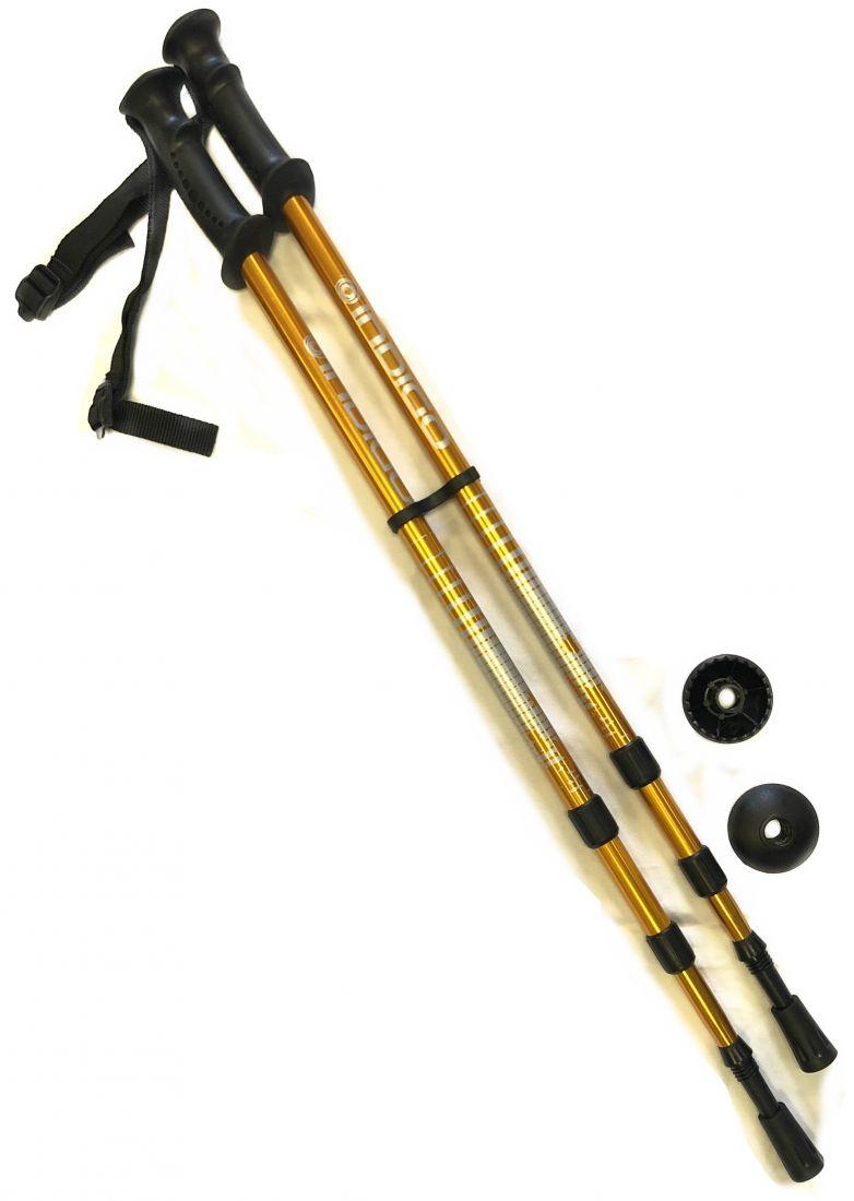 Палки для скандинавской ходьбы телескопические INDIGO SL-1-3