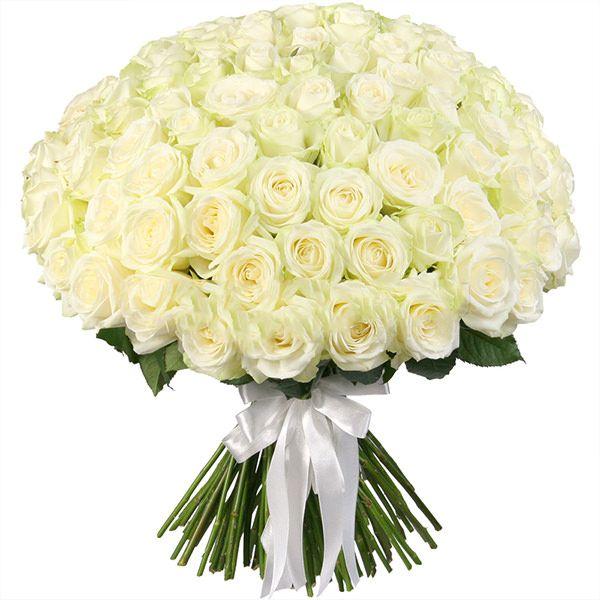 Букет из белых роз 101 шт. 70 см «Королевский»