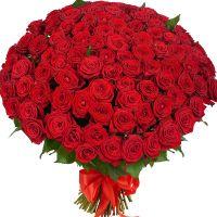 101 роза Красное облако