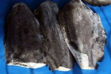 Палтус без головы тушка  1 - 2 кг  Мурманск от 7 кг