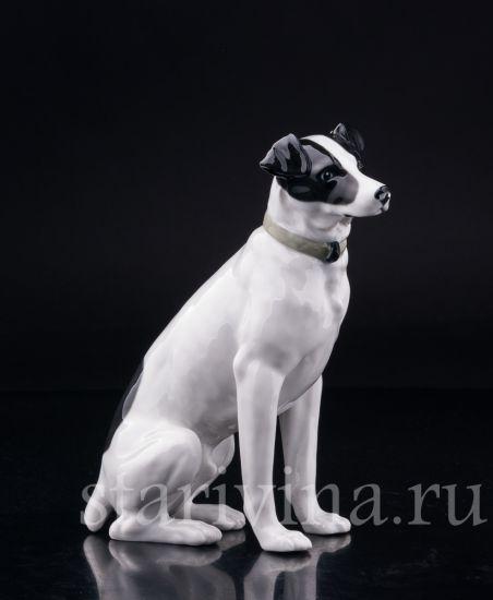 Изображение Охотничья собака, Pfeffer Gotha Thuringen, Германия, 1934-1942 гг