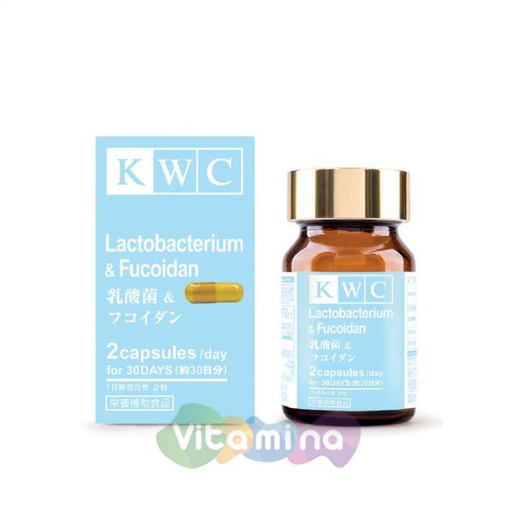 KWC Лактобактерии с фукоиданом